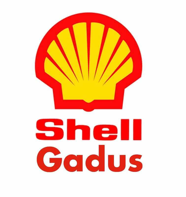 Shell Gadus S2 V100 3 Fusto 50 kg.