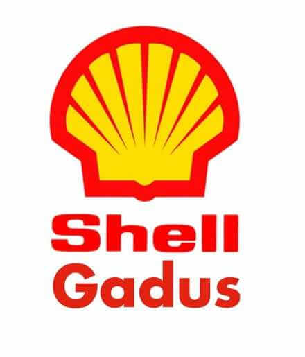 Shell Gadus S2 V220 AC 2 Fusto 50 kg.
