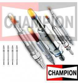 CH190/002 Candeletta Champion