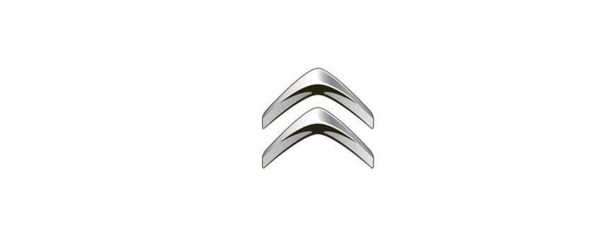 Shock absorbers Citroen for sale online complete catalog